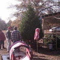Liberty Hill Christmas Tree Farm