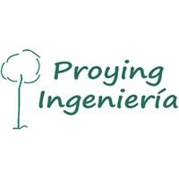 Proying Ingenieria