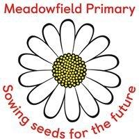 Meadowfield Primary School