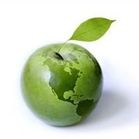 Plantscape LLC