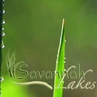 Savannah Lakes Community
