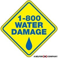 1-800 Water Damage of Raleigh