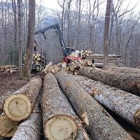 High Country Timber & Grading