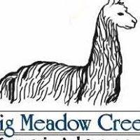 Big Meadow Creek Alpacas in Troy, Idaho