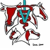 Fremont Veterinary Hospital