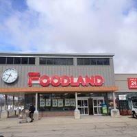 Forest Foodland