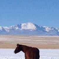 Hidden Creek Equestrian Center, LLC