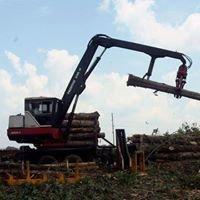 Q&S Logging Co.