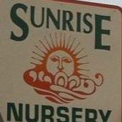 Sunrise Nursery