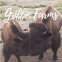Griffin Farms Pumpkin Patch