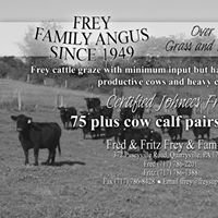 Frey Family Angus