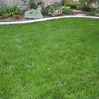 Natural Care Lawn & Garden Products