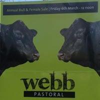 Webb Pastoral