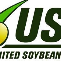 Soybean productivity