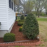 Outdoor Home and Lawn Management