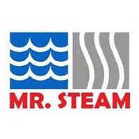 Mr. Steam Carpet Clean