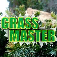 Grass Master Maintenance and Landscaping, LLC