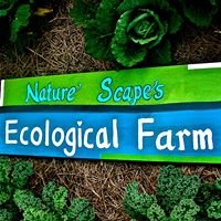 Nature Scapes ECO FARM at Nature Scapes