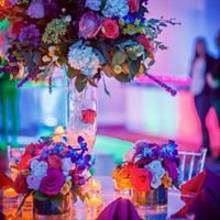 Anthony Michael Events