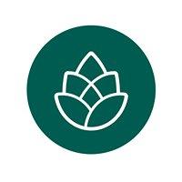 Evergreen Auburn
