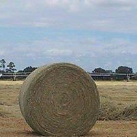 Clegg Sod Farm Inc