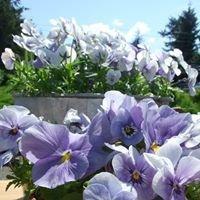 Barnyard Blooms Garden Boutique