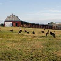 DeHaven Ranch/Preserve