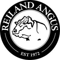Reiland Angus