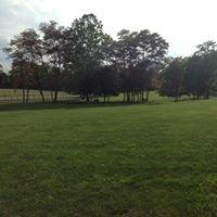 Canine Meadows