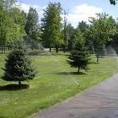 Dynamic Irrigation