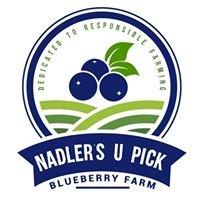 Nadler's U Pick Blueberry Farm