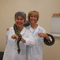 Jordan Lake Animal Hospital