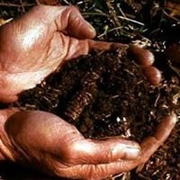 Soil Technology of Texas