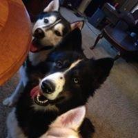 OBX Huskies