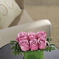 Westshore Flowers