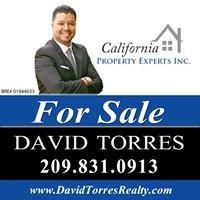 David Torres- Realtor