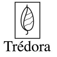 TREDORA SALON and DAY SPA