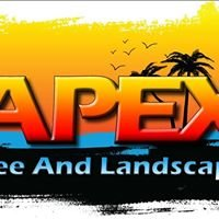 Apex Tree and Landscape