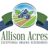 Allison Acres Organic Blueberry Farm