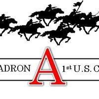 Assassin Troop, 3-1 CAV