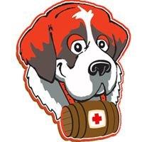 Rescue Roofer Orange County Ca