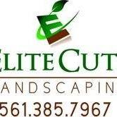 Elite Cuts Landscaping