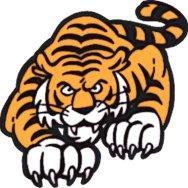 Tigertowntogo.com