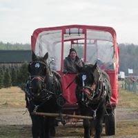 Markowski Farms
