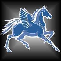 Pegasus windows