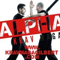 Alpha Krav Maga, Gilbert-AZ