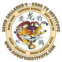 David Gallaher's Gung Fu Institute