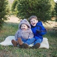 McDermott's Christmas Tree Farm