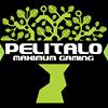 Pelitalo Maximum Gaming