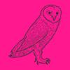OWL PR